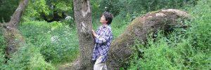 Sylvothéapie : soigner avec l'aide des arbres