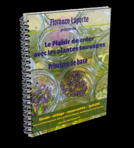 Le plaisir de créer avec les plantes sauvages : PRINCIPES DE BASE