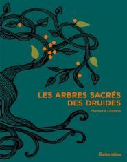 Les druides et L'importance des arbres dans notre vie