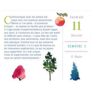 Almanach 2019 sur les arbres - sylvothérapie